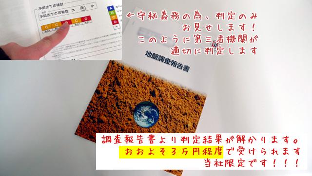 調査報告書より判定結果が解かります。 おおよそ3万円程度で受けられます 当社限定です!!!